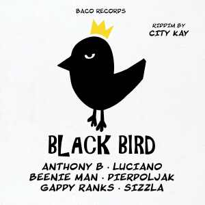 Baco Records - Black Bird Ridim