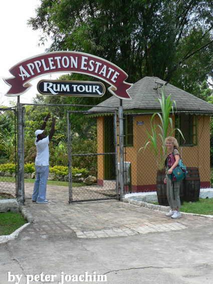 reggaestory travel jamaica teil 13 2008. Black Bedroom Furniture Sets. Home Design Ideas